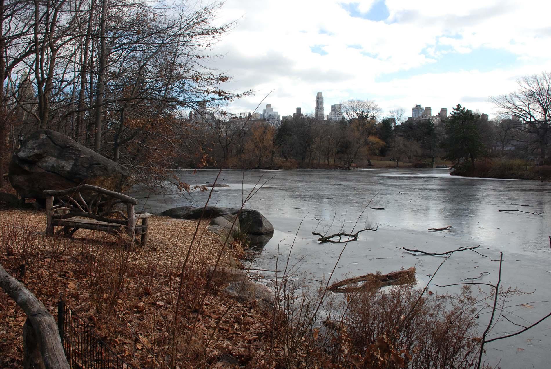 New Yorks Central Park är ett exempel på stadsomvandling som drevs igenom på ett tämligen icke-demokratiskt sätt, enligt sociologen och stadsplaneraren Richard Sennett, en av talarna på Arkitekturgalan. Är det en lyckosam slump eller top down-planering när den funkar som allra bäst att Central Park är en av stadens mest uppskattade platser? Foto: Aron Aspenström
