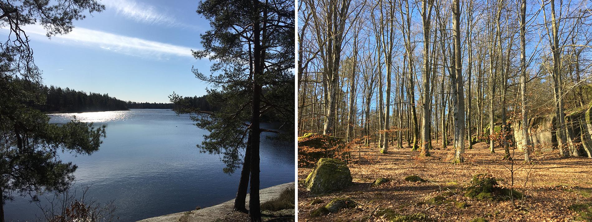 """Skärsjön i Ronneby, Blekinge län med omkringliggande skog, grillplatser, bryggor och naturstigar är ett populärt och lättillgängligt tätortsnära strövområde för promenader, korta utflykter, bad, fiske och cyklande """"off road"""". Foto: Emina Kovacic"""